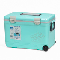 Термобокс SHINWA Holiday Land Cooler 27H синий