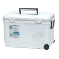 Термобокс SHINWA Holiday Land Cooler 33H белый